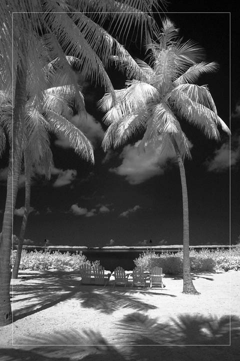 Florida Keys Islamorada infrared photo  by Gary Sweetman